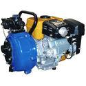 Petrol & Diesel Pumps