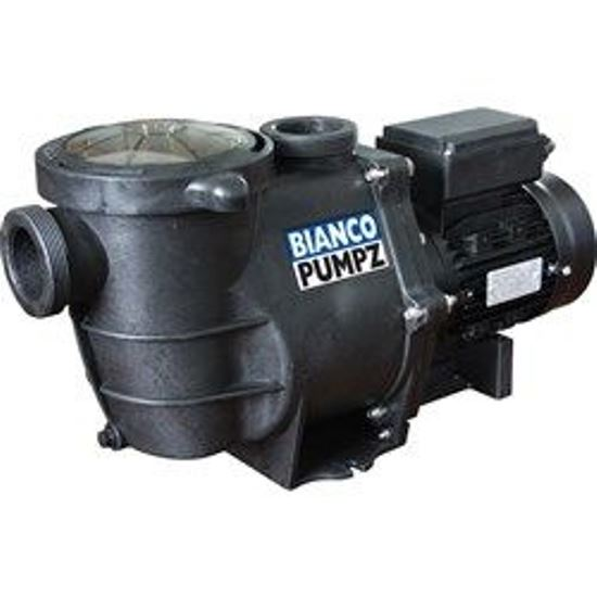 BIASPP1100 Swimming Pool Pump