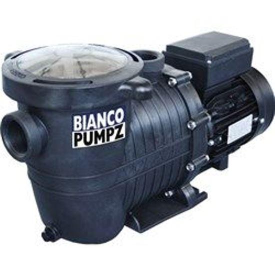 Bianco Pool Pumps